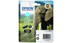 Epson T243XL, LC, original patron